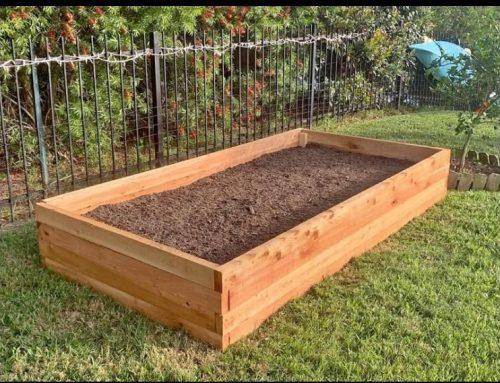 Choosing a Raised Garden Bed for Your Garden